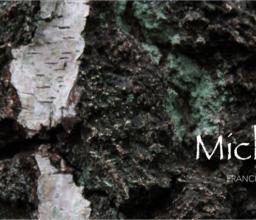 Michael (2016)
